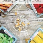 Seed Sorting Sensory Activity for Kids- Seeds are great for exploring sensory and fine motor skills. Put them to use in this fun sorting activity for kids.