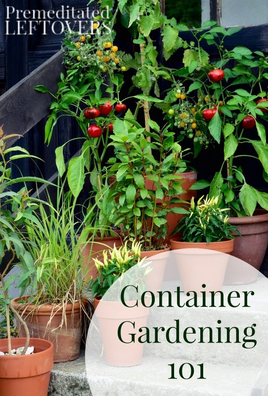 Maybe your yard does not offer enough room to plant everything you would like, or perhaps you are using containers to dress up your porch, patio, or deck. Either way, container gardening is a fun and an easy way to create beautiful and of course edible plants and flowers for yourself and your family.