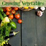 10 Tips for Growing Vegetables