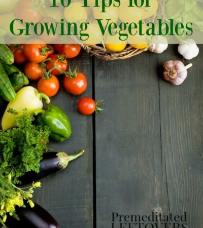 10 Tips for Growing Vegetables- You can grow and enjoy your own vegetables with a little planning and good maintenance. These tips will show you how!