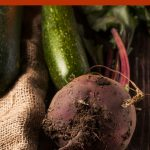 7 Gardening Tips To Produce Larger Harvests
