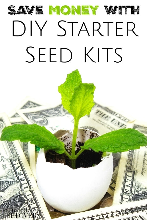 DIY Garden Seed Starter Kits- Starting plants from seeds is an ideal way to save money on your garden. These homemade seed starter kits are easy and frugal.