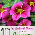 10 Inspirational Quotes All About Gardening- Find inspiration to get out and grow something with these lovely gardening quotes by various authors.