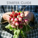 The Ultimate Backyard Garden Starter Guide
