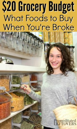 20 dollar grocery budget - a list of foods to buy when you are broke.