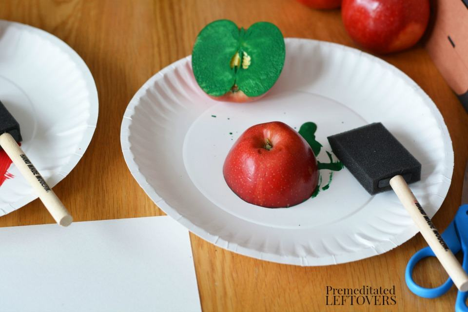 Apple Stamping Craft- use foam brushes to coat apples with paint