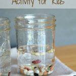 Bouncing Beans Activity for Kids- Make a jar full of bouncing beans with this easy tutorial. It is a fun and education activity for kids of all ages!