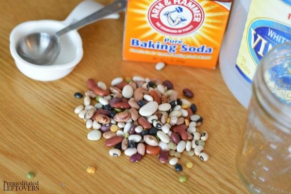 Bouncing beans activity - supplies
