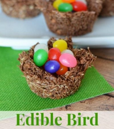 Edible Bird Nests
