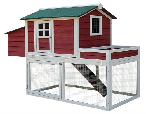 What You Need to Raise Chickens- Chicken Coop