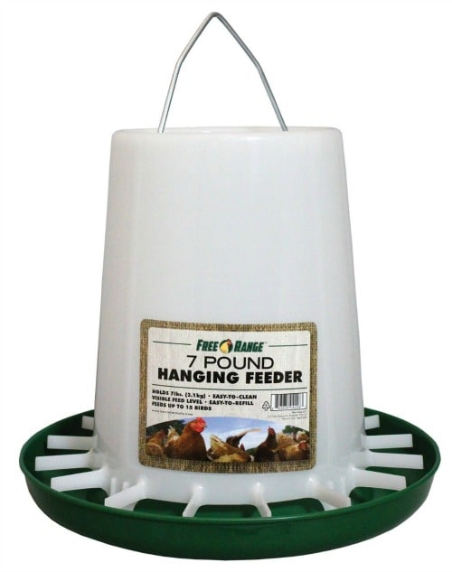 What You Need to Raise Chickens- Chicken Feeder
