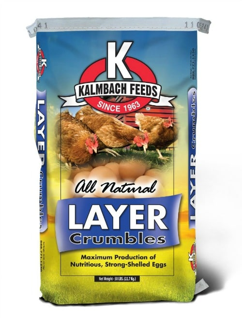 What You Need to Raise Chickens- Chicken Layer Feed