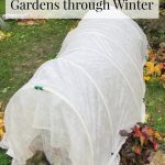 How to Extend Gardening with Cold Frames and Cloches