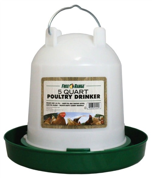 What You Need to Raise Chickens- Chicken Water Feeder