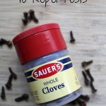Clove is a natural option for keeping common pests away from your home and yard. These 5 tips on How to Use Cloves to Repel Pests will show you how!