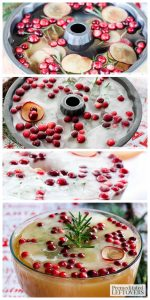How to create the ultimate Ice Ring for your Holiday Punch- Cranberry & Sugar Plum Ice Ring