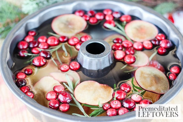 Cranberry and Sugar Plum Ice Ring- add ingredients to bundt cake pan