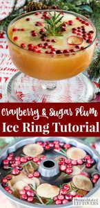 Cranberry and Sugar Plum Ice Ring Recipe and Tutorial