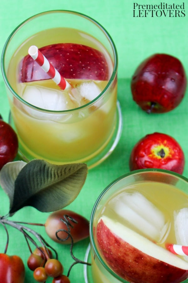 This Apple Cider Bourbon Cocktail is an easy recipe to mix up with just three ingredients. Add a bright red apple slice for the perfect garnish!