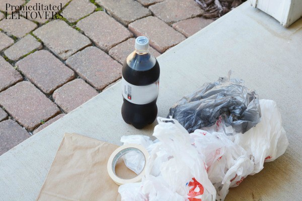 Diet Cola Volcano Activity- materials