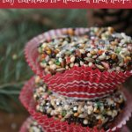Easy Reindeer Food Recipe