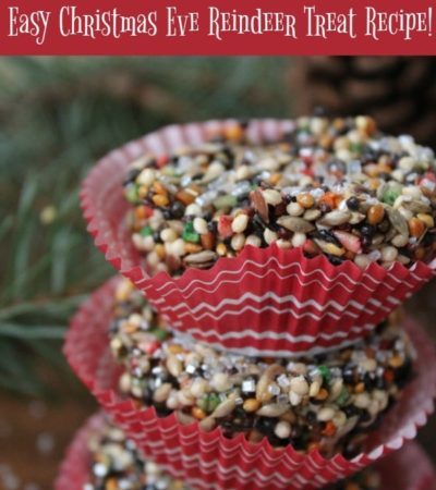 Make this Easy Reindeer Food Recipe with your kids to put outside on Christmas eve. It is a safe treat for squirrels and birds to nibble on as well.