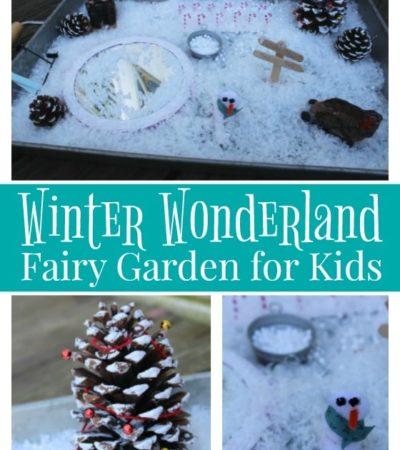 Winter Wonderland Fairy Garden for Kids