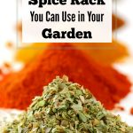 6 Items from Your Spice Rack You Can Use in Your Garden
