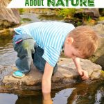 5 Activities to Teach Kids About Nature