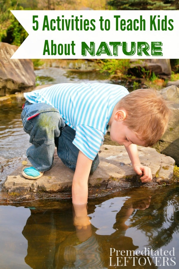 Kids are naturally curious, so getting them engaged in nature is easy. Explore the outdoors together with these 5 Activities to Teach Kids About Nature.