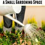 6 Ways to Make the Most of a Small Gardening Space