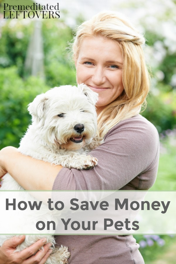 Between pet food, vet care, and other expenses, owning pets can end up costing quite a bit. Here are some key tips on How to Save Money on Your Pets.