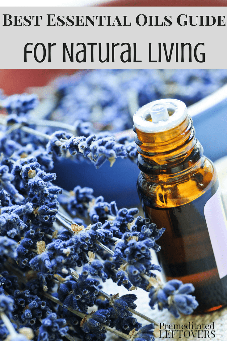 The Best Essential Oils Guide is what you need to safely use essential oils and herbs with your family and in your home! Check out our tips for best essential oil safe practices!