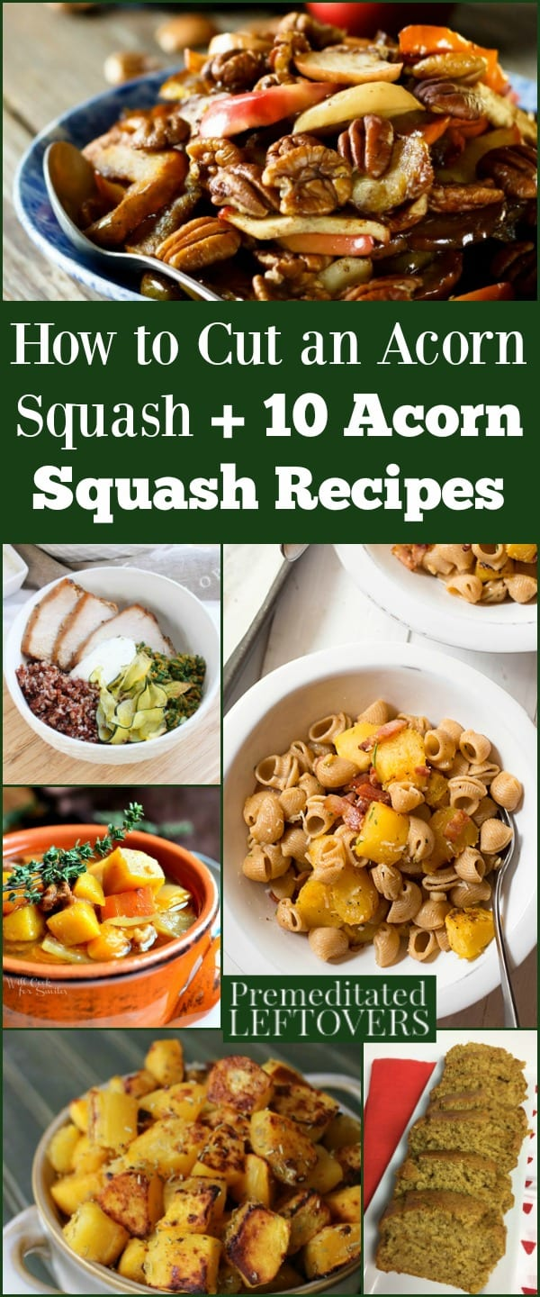 Learn how to cut an acorn squash and use it in 10 acorn squash recipes, including roasted acorn squash, stuffed acorn squash, acorn squash bread, and more.