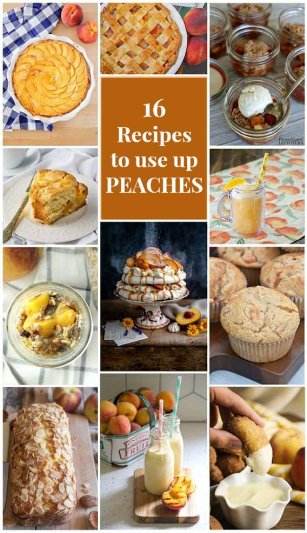 16 Delicious Peach Recipes