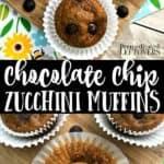 easy zucchini chocolate chip muffins